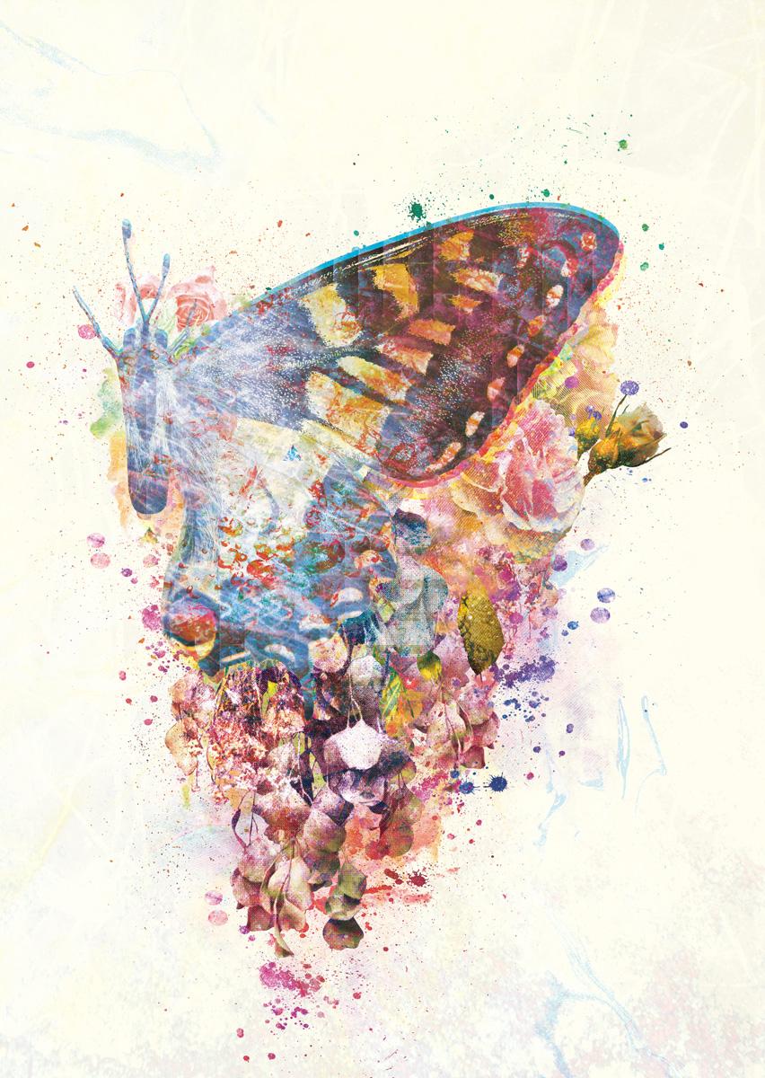 蝶は羽ばたいて